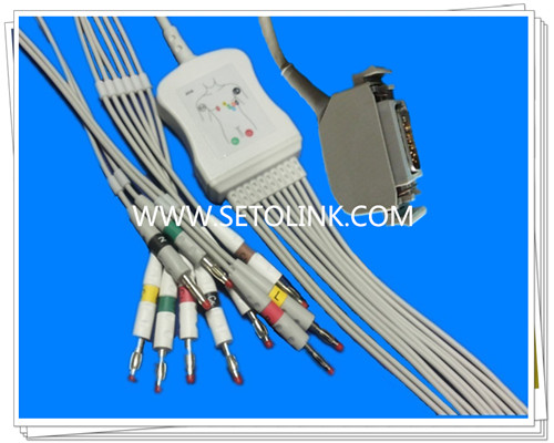 Hellige Siemens Bosch One Piece ECG Cable 10 Leadwires
