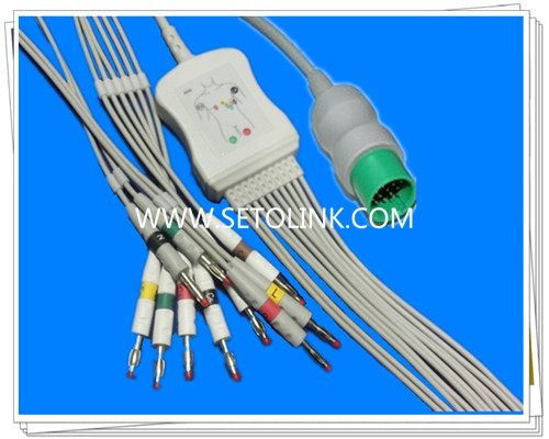 Spacelabs One Piece ECG Cable 10 Leadwires